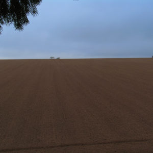 Plowed Open Field