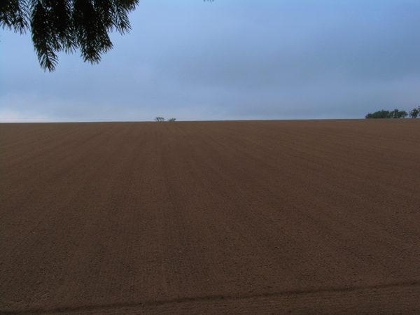 Plowed Open Field